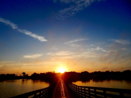 Foot Bridge in Lakes Regional Park Fort Myers Florida