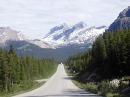 Canadian Rockies north of Banff Canada