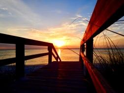 Delenoir Wiggins State Park Florida