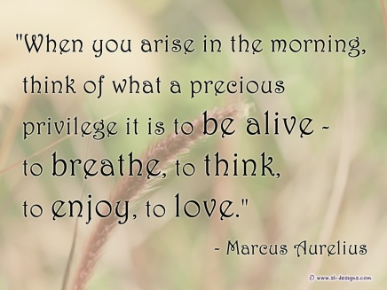 living-life-quote-1